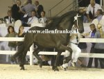 Bestelnummer 130914306 Vardou fan it Waad (Beart x Tsjerk).JPG