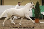 bestelnummer 190211132 easter mountain didly do blackwell bo diddly x alfred pretty2.jpg